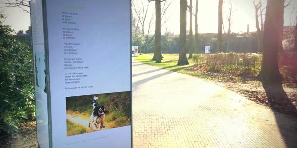 Voorbeeld van een infobord tijdens de poëzieroute in het Gemeentepark