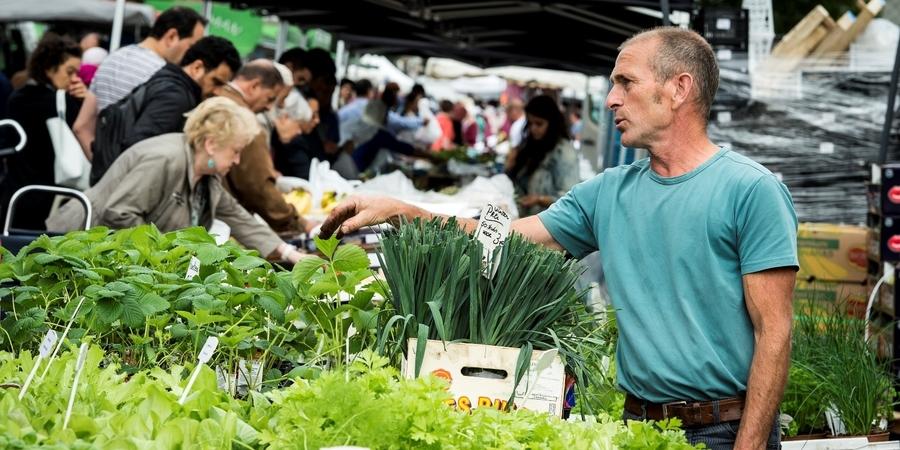 Markt in Deurne