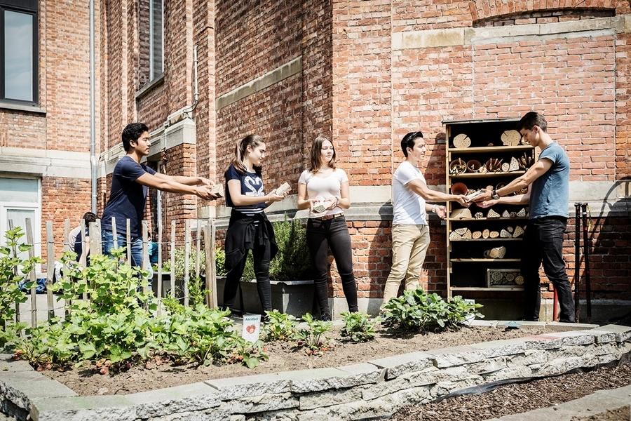 Leerlingen bouwen een bijenhotel