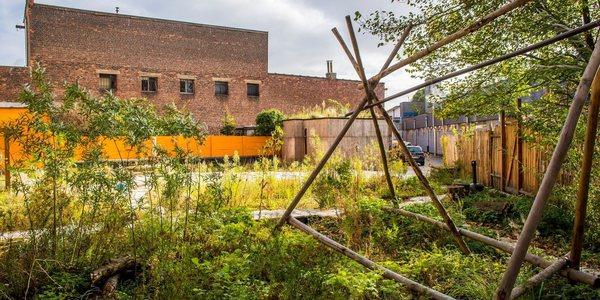 Tuin op het dak van het Scoutsgebouw