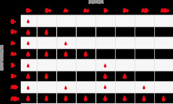 bloedgroep o