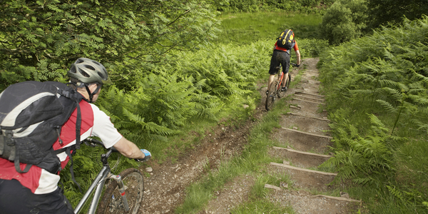 Twee mountainbikers in het bos