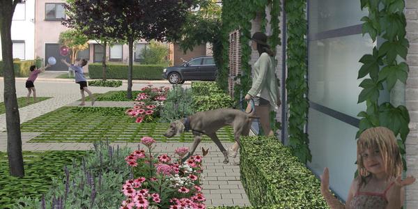 Het nieuwe pilootproject 'tuinstraten' is van start gegaan. Vijf districten zullen geselecteerde straten permanent vergroenen en verblauwen (bevorderen van infiltratie). Het district Wilrijk heeft de Aziëlaan voorgesteld als pilootproject tuinstraat.