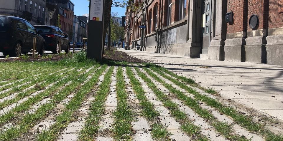Foto van de afgewerkte Bredastraat met grasbetontegels.