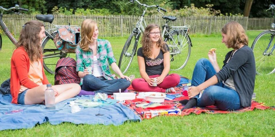 Jongeren picknicken in het park