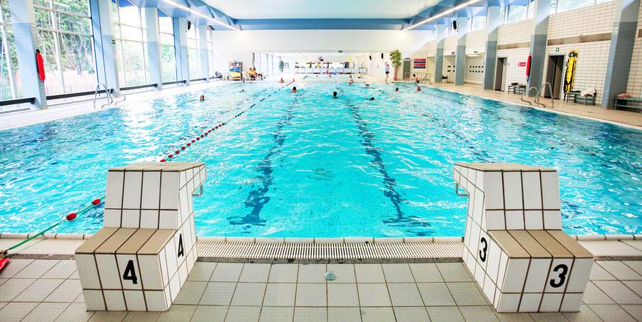Overzichtsfoto groot bad zwembad Ieperman