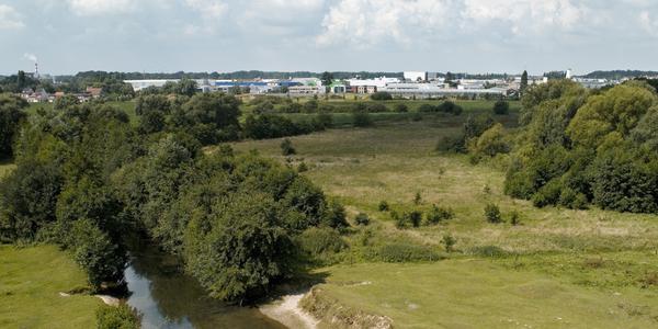 Ontwikkeling Neerland