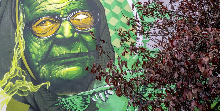 Graffitiportret van een oude dame die Moeder Natuur voorstelt