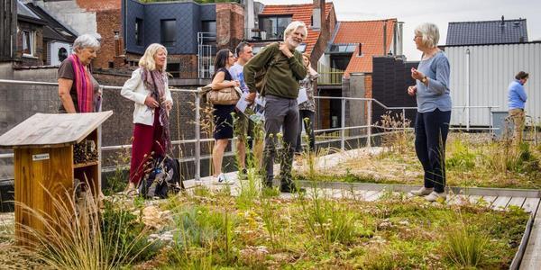 Bezoekers op het dak van beweging.net krijgen uitleg over het groendak