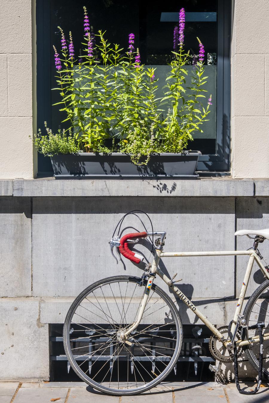 voorgevel woning met bloembak en fiets