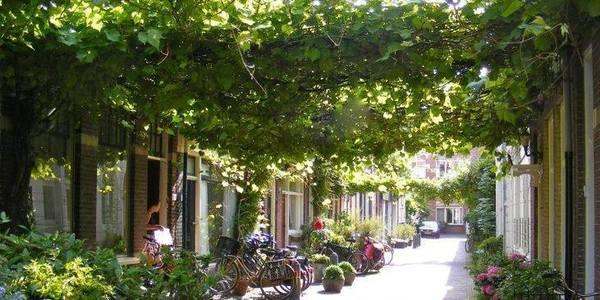 Voorbeeld van een groene straat