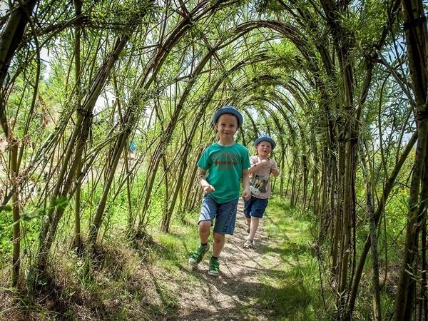 Kinderen lopen door een wilgentunnel