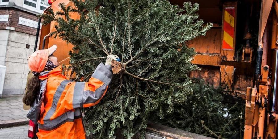 kerstboom wordt in huisvuilwagen gegooid