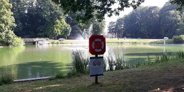 Er is een waarschuwingsbord rond de blauwalg geplaatst langs de vijver van het Steytelinckpark.