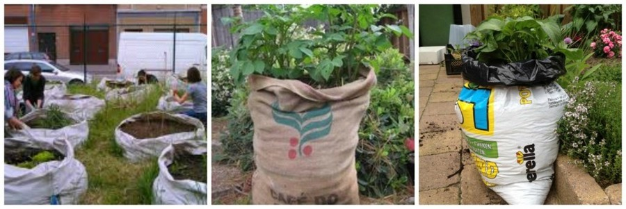 In samentuin 't Dokske in Merksem wordt er getuinierd in bigbags. Ook in een jutte zak of een zak van compostgrond kan je makkelijk bijvoorbeeld aardappelen telen.
