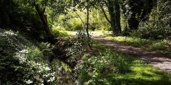 Hollebeekvallei