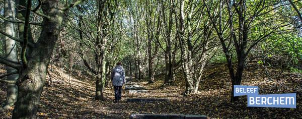 Wandelaar in natuurgebied Wolvenberg