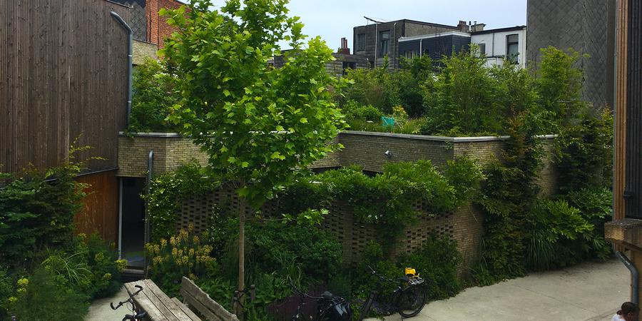 de buitenzijde van een gelijkvloerse woning met op het dak een tuin