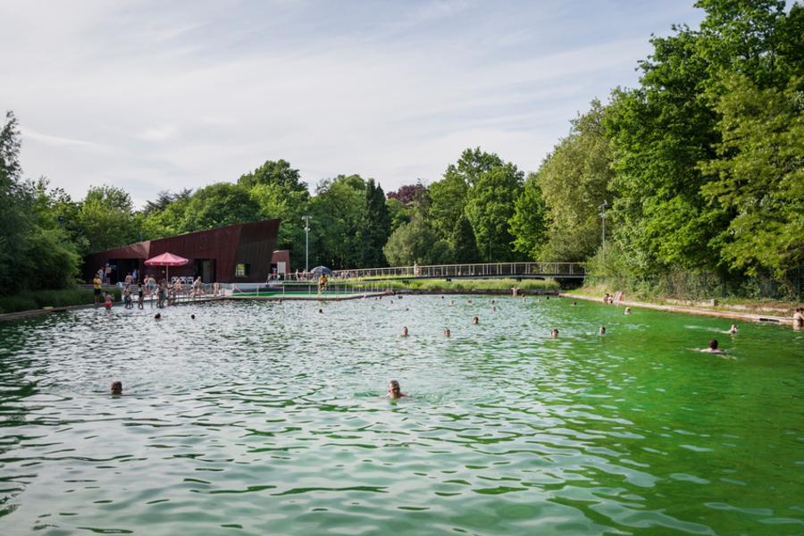 Overzichtsfoto van zwemvijver Boekenberg met op de achtergrond het ingangsgebouw