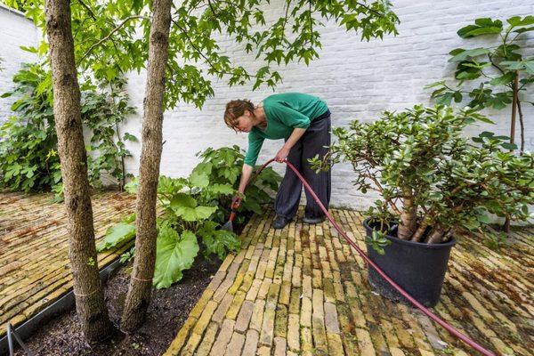 Tip van Boud: je hoeft geen cement te gebruiken voor de aanleg voor een terras of patio met steen. Breekzand is goedkoop, legt zich prima stabiel, het laat toe om tegels te herschikken en regenwater om in te sijpelen.