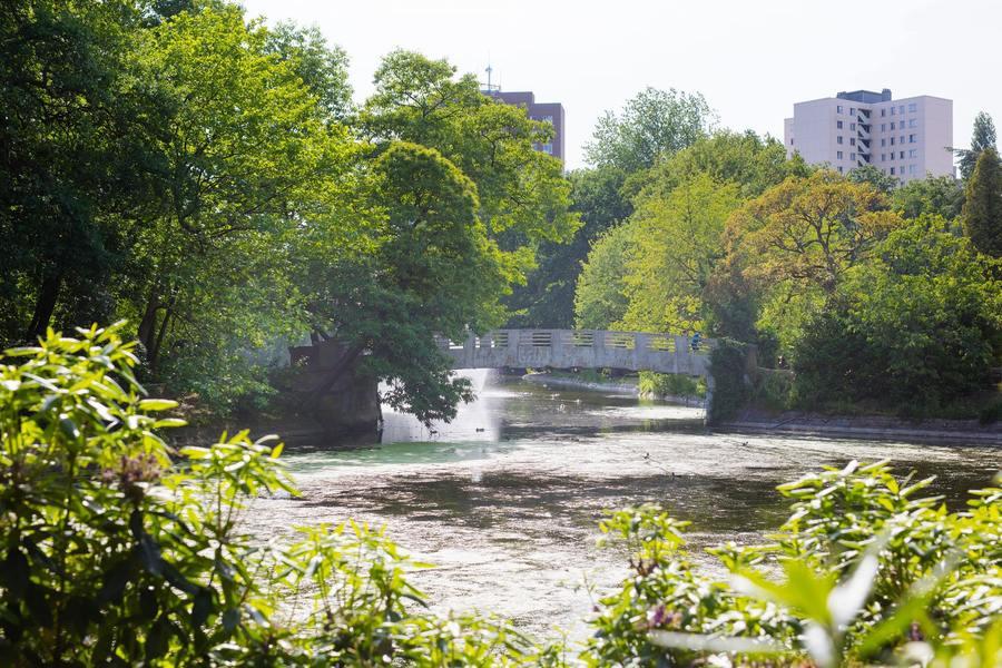 Het bruggetje in park Sorghvliedt