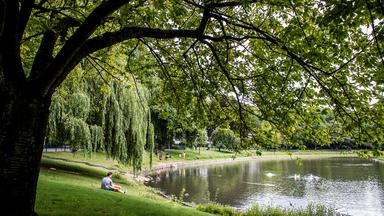 Groenplan verbindt groen in district Antwerpen