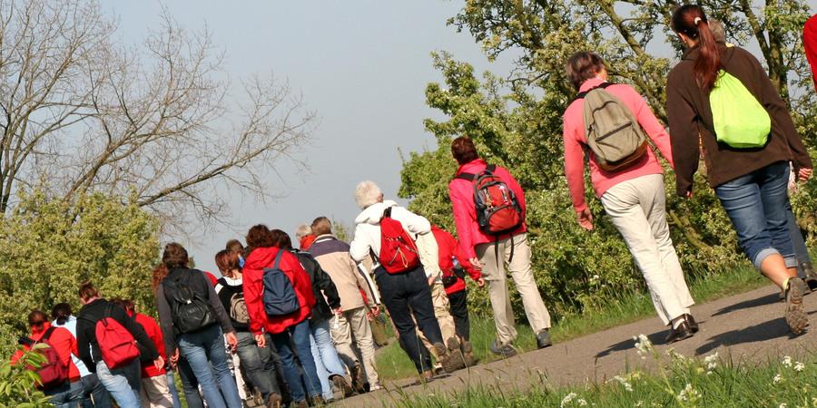 Groep mensen aan het wandelen op een asfaltweg