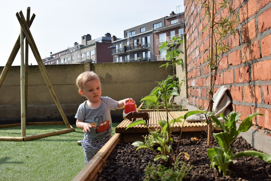 Jongetje speelt met speelgoedpaard en -auto