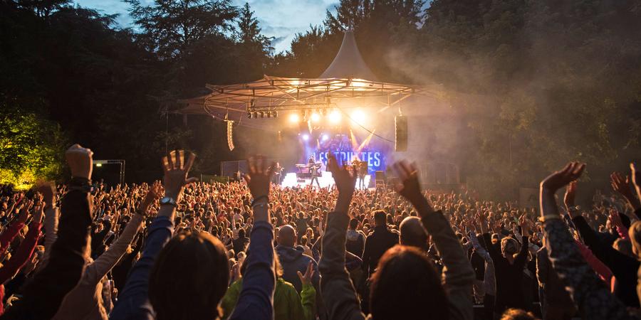 Honderden mensen steken hun handen in de lucht tijdens een optreden.