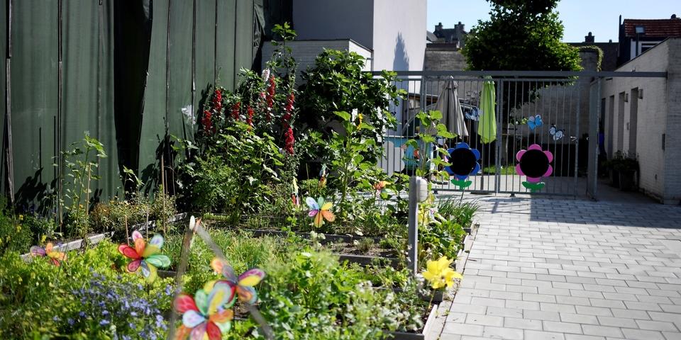 Bloemen en planten in kleurrijk perk