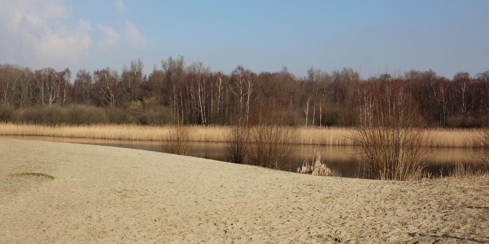 Zandvlakte Linkeroever