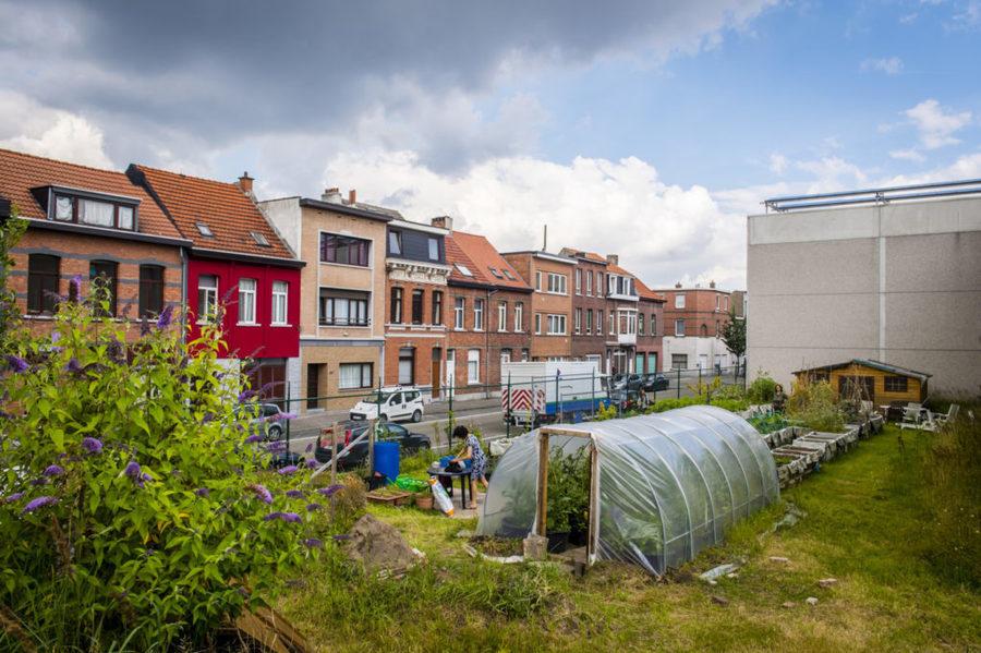 Op dit terrein van 500 vierkante meter is er altijd werk te doen en nieuwe tuiniers zijn steeds welkom.