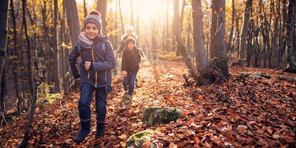 Drie kinderen rennen in een bos op een zonnige herfstdag.