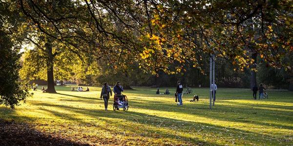Wandelen in het park tijdens de herfst