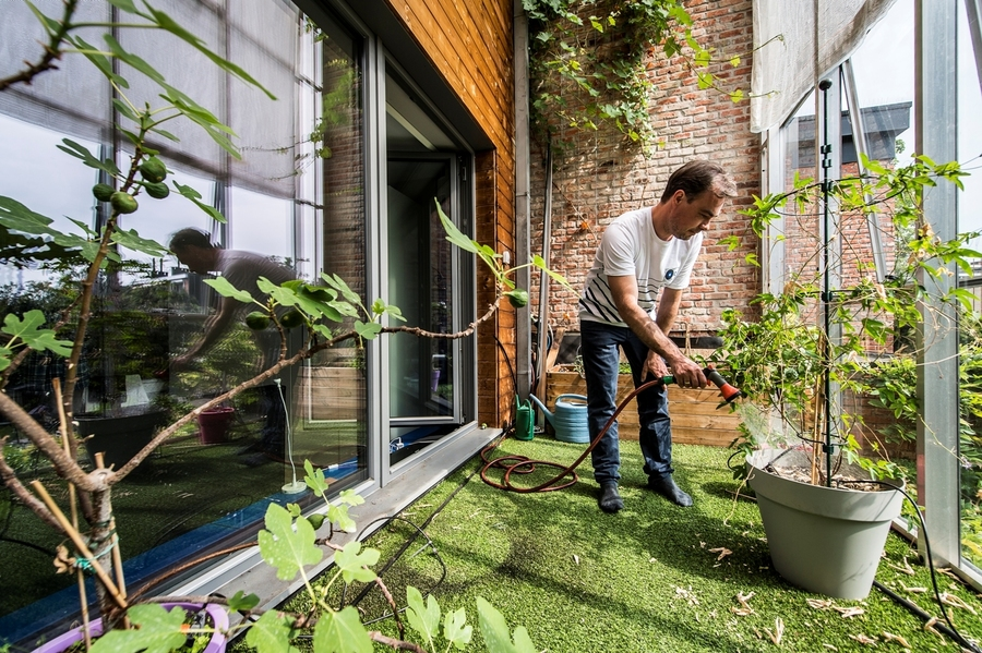 Een man geeft water aan de planten in de buitenruimte. We zien een vijgenboompje en een druivelaar.
