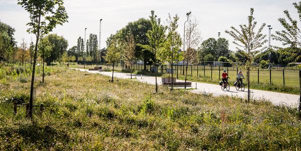 De parkaanleg naast de vele wandel- en fietspaden doorheen het Park Groot Schijn