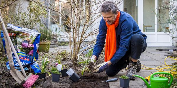 Man plant nieuwe planten in net uitgebroken koer