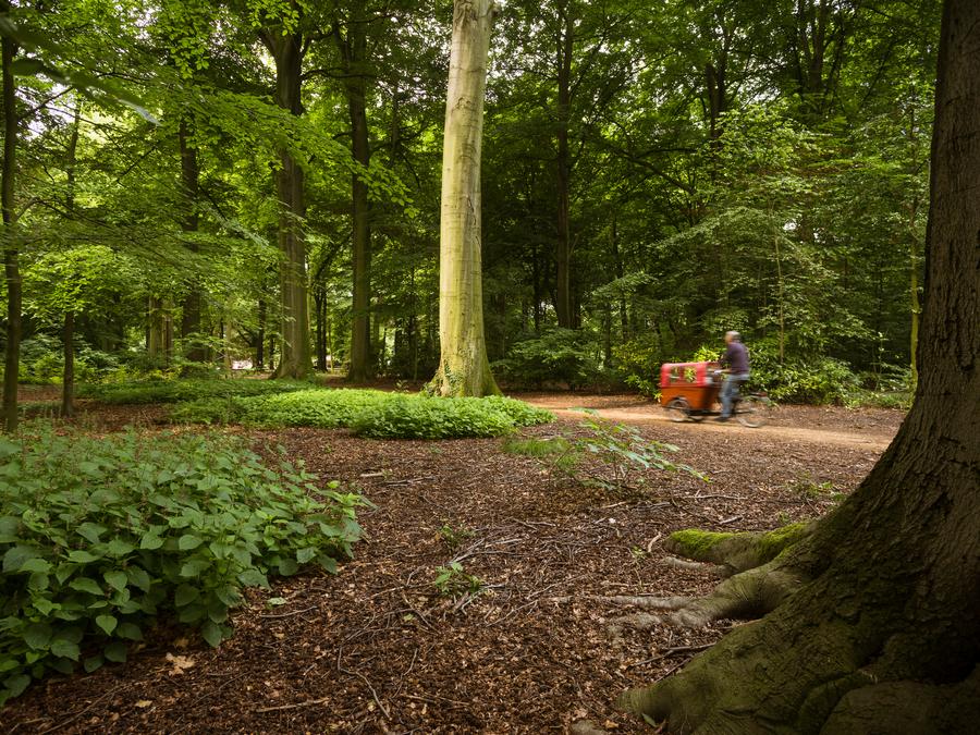 Foto van het Te Boelaarpark