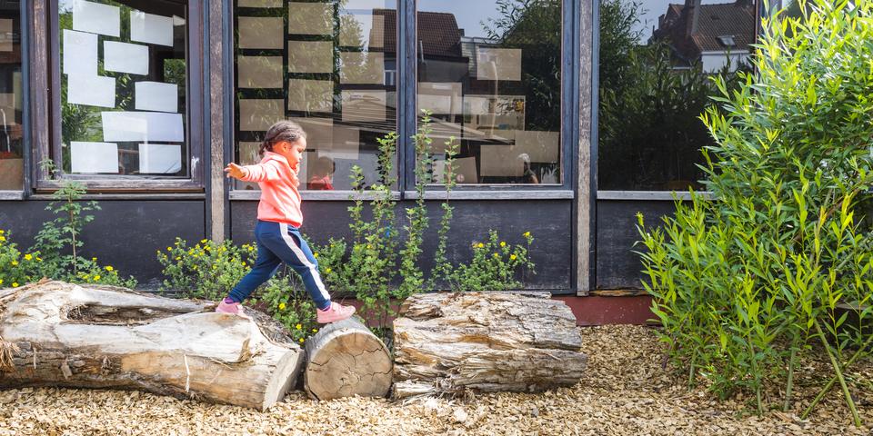 Eiken Boomstammen Te Koop.Een Tweede Leven Voor Gevelde Bomen Welkom Antwerpen Be