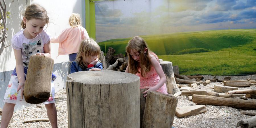 Kinderen spelen met boomstammen en takken