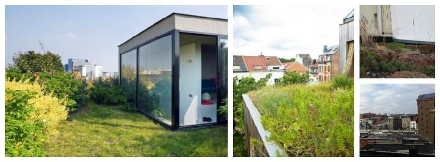 Hoe meer planten op je dak met grote bladeren en volume, hoe meer je dak helpt met het zuiveren van luchtvervuiling van het verkeer. Van links naar rechts: een intensief groendak, een biodiversiteitsdak met grassen en kruiden, een sedumdak en een zwart dak.