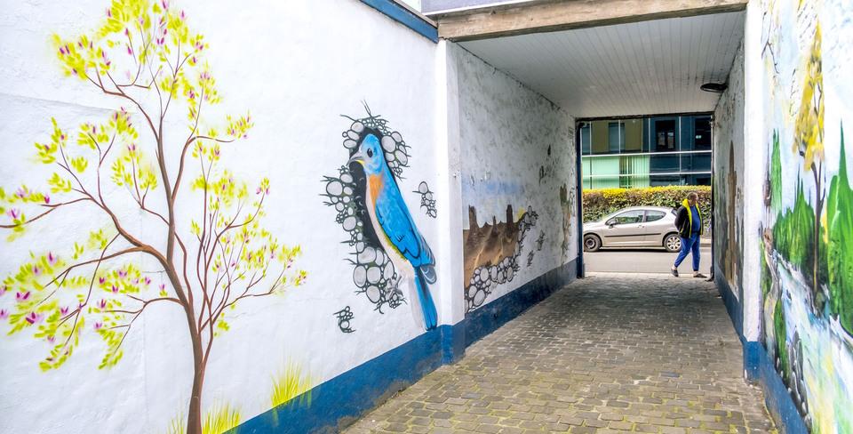 Steegje dat opgefleurd wordt door verschillende muurschilderingen