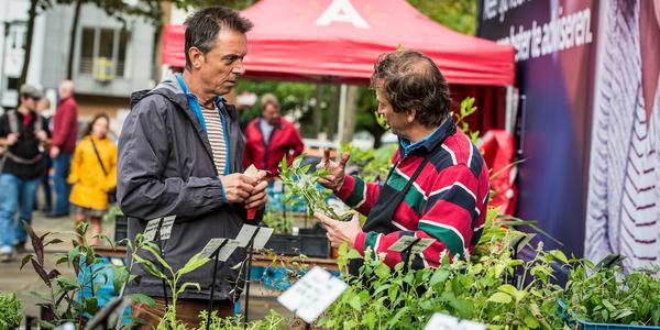 Een man verkoopt kruiden op de markt.
