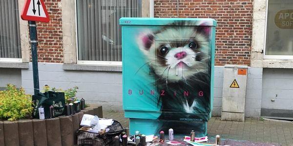Een nutskast in een straat in Diest wordt opgefleurd met een tekening van een bunzing.