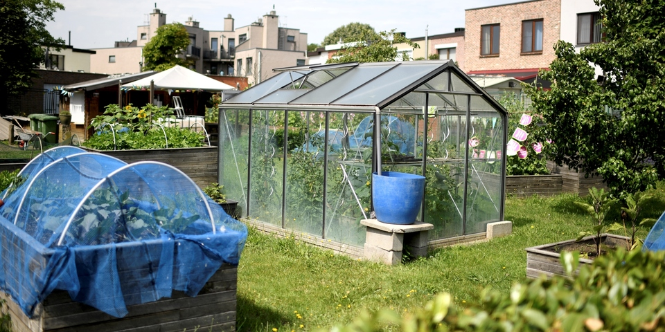 Tuin met serre met groenten en bloembakken