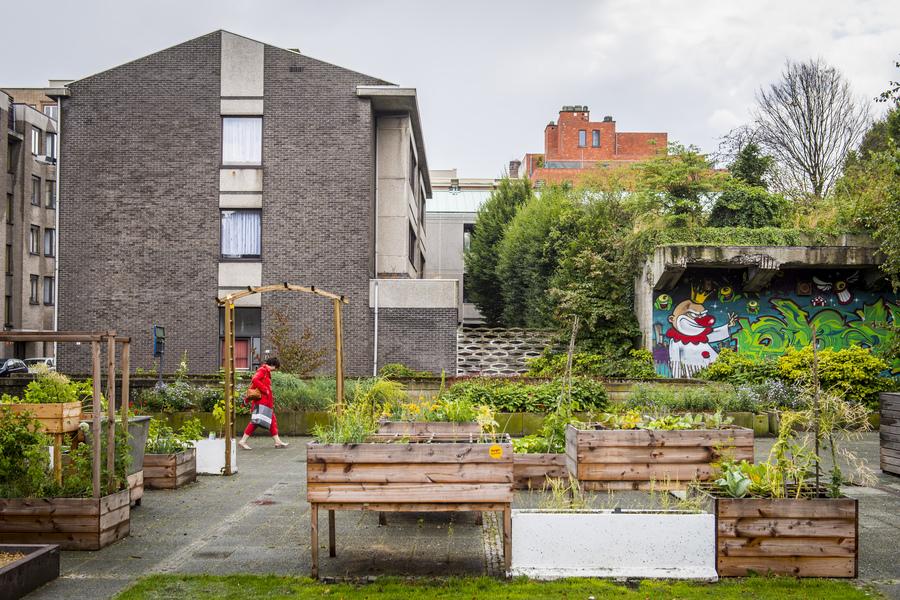 Samentuin Het Heldenplein is een volledig publieke samentuin in de wijk Sint-Andreis