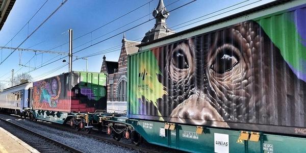 Werk van Antwerpse graffiti artiest Smok op Noah's Train