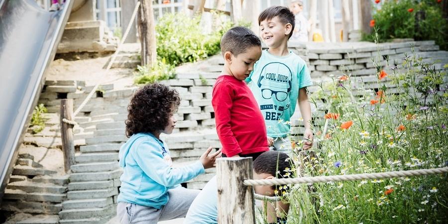 Kinderen kijken naar de wilde bloemen op hun speelplaats