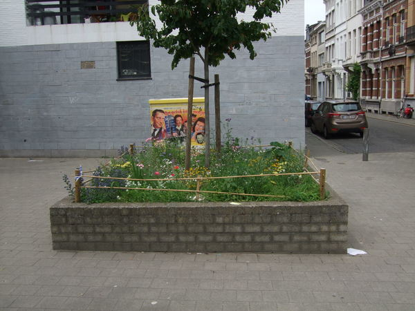 pleintje Langstraat/Van Daelstraat
