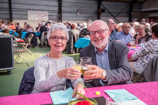 Senioren drinken een glaasje op een feest